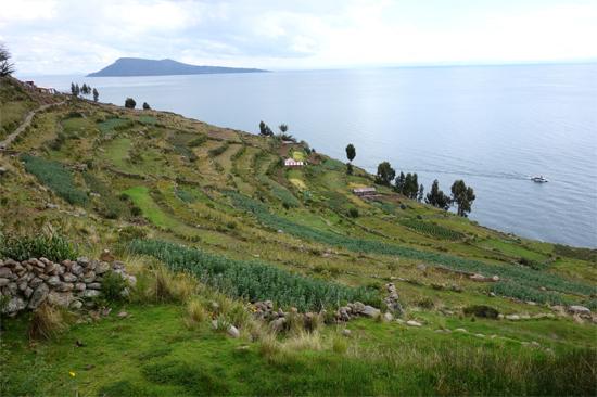 タキーレ島 (3)