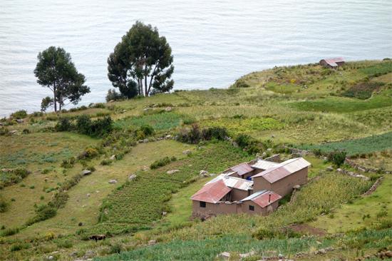 タキーレ島 (4)